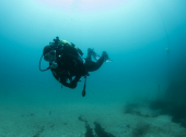 Diving mediterranean